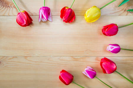 Frame of tulip flowers on a wooden background Stock Photo