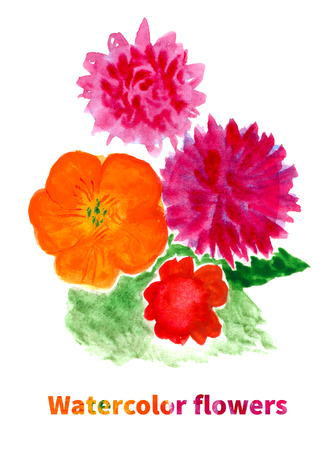 nasturtium: Summer bouquet of colorful flowers. Hand drawn watercolor floral illustration. Stock Photo