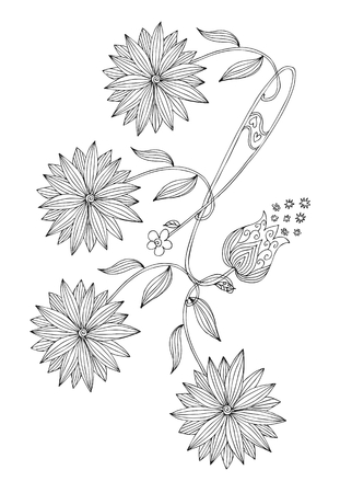 Hand drawn doodle flowers. Black and white illustration for coloring book. Vector monochrome floral drawing. Illustration