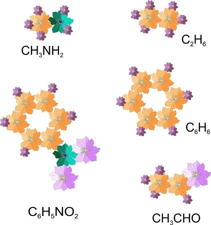 benzene: Interesting chemistry. Molecules from flowers - methylamine, nitrobenzene, ethane, benzene, ethanal. Organic chemistry. Vector illustration. Illustration
