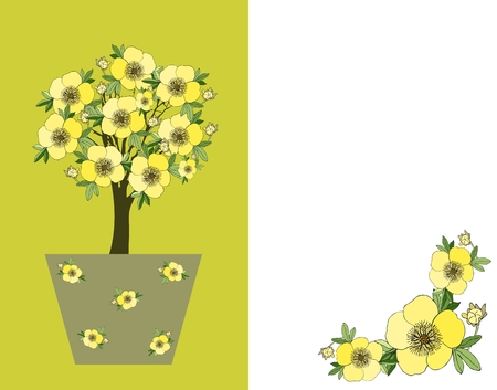 kuril: Kuril tea. Bonsai. Cute card with blossom tree in flower pot. Vector illustration. Illustration