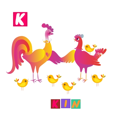 kin: Year of the rooster. Cute cartoon english alphabet with colorful image and word. Kids vector ABC. Letter K. Kin. Illustration