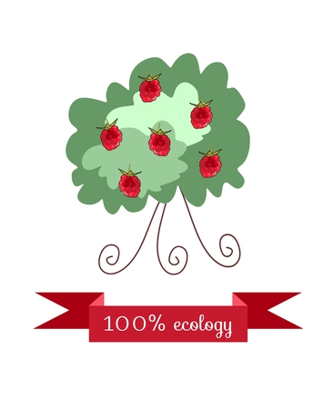 marmalade: Raspberry bush on white background. Beautiful packaging for juice, jam, marmalade. Vector illustration.