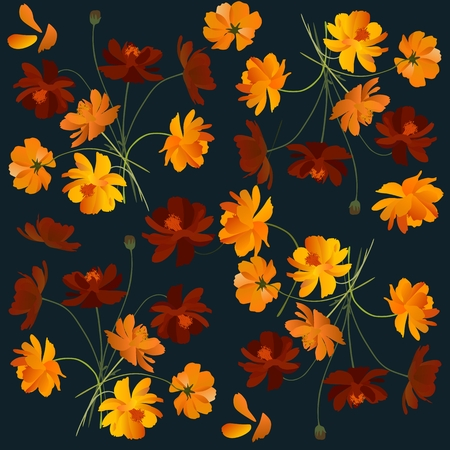 Beautiful floral pattern with orange cosmea flowers (cosmos sulphureus). Фото со стока