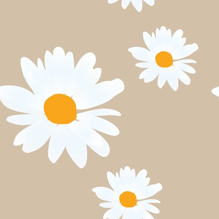 Daisy flowers on golden illustration