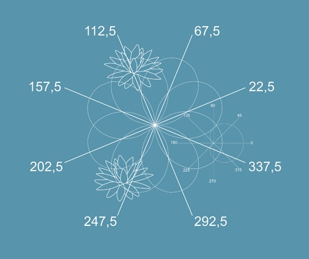 Beautiful math vector. White graphs of eight - petals rose and silhouette of water lily flowers on blue background.