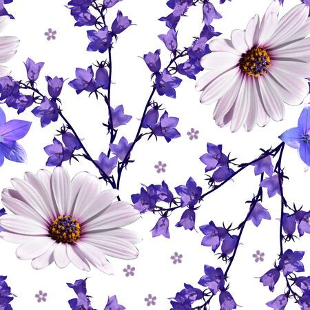 Floral seamless pattern. Flowers of african daisy (osteospermum), platycodon and bellflowers on white background. Beautiful summer design.