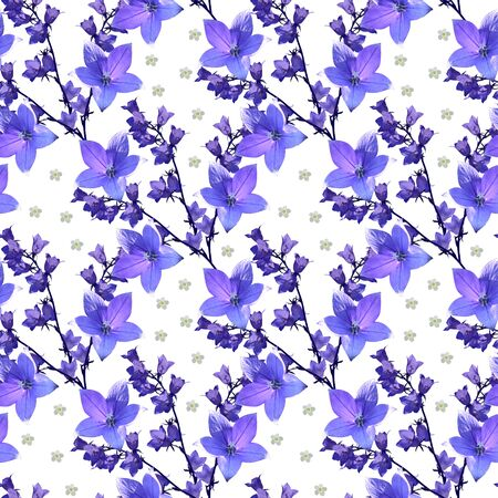 Beautiful floral seamless pattern with violet flowers of bellflowers on white background.