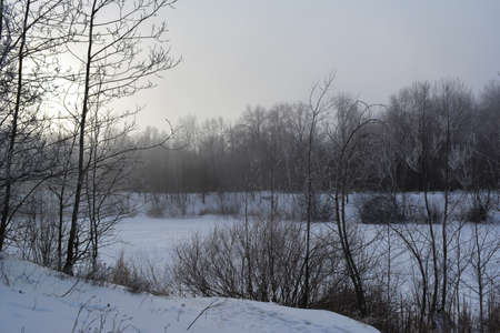 Beautiful winter landscape with frozen pond and trees on its banks