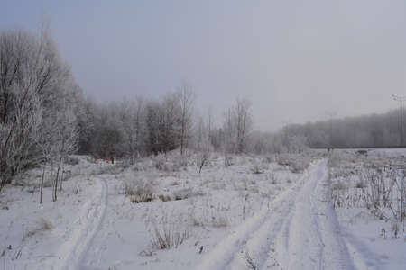Winter landscape with snowy roads in overcast day.