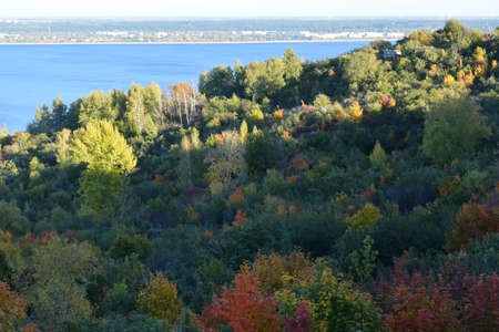 Colorful trees in the forest on the bank of Volga river. Beautiful landscape in the beginning of autumn