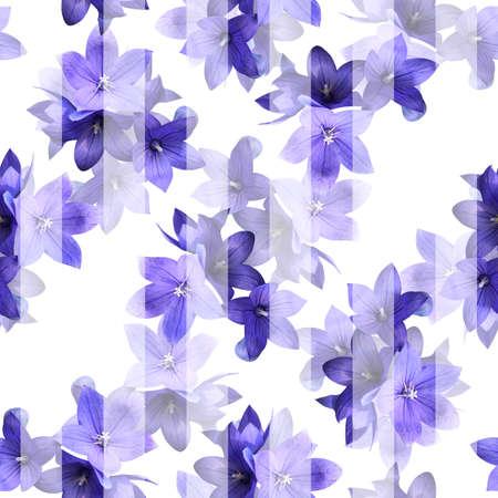 Beautiful seamless pattern with violet bellflowers under semi transparent white stripes. Zdjęcie Seryjne