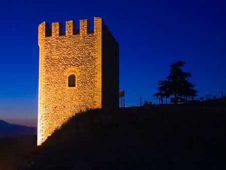 watchtower: Watchtower and tree at night in Skopje, Macedonia