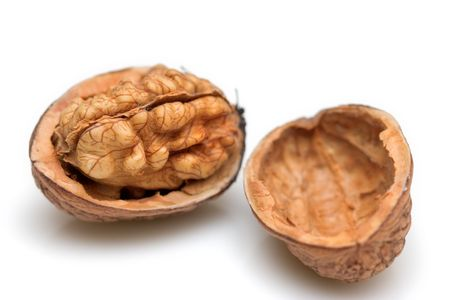 Close-up of a walnut against white background photo