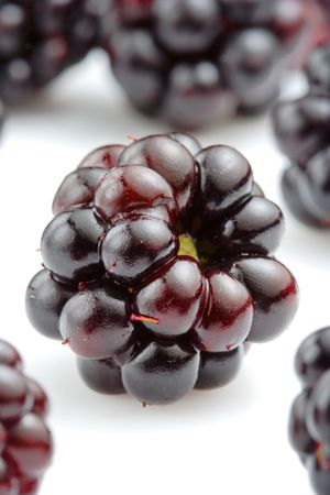 Isolated close up of a bunch of fresh blackberries Stock Photo - 1735936