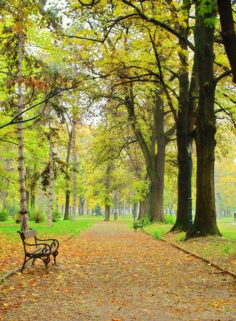 Fall in the city park in Skopje, Macedonia photo