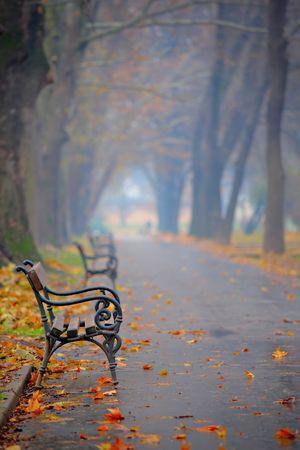 Bench in a city park in Skopje, Macedonia photo
