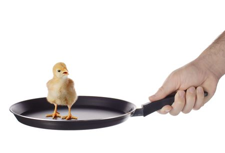 Little chicken on a frying pan photo