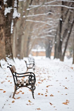 Bench in the park in winter Stock Photo