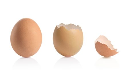Eggshells isolated against white background photo