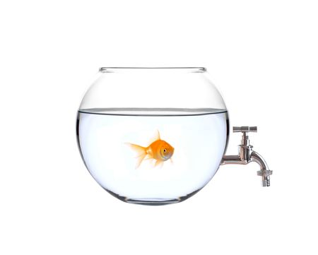 watertap: Fish in a bowl with a faucet on it