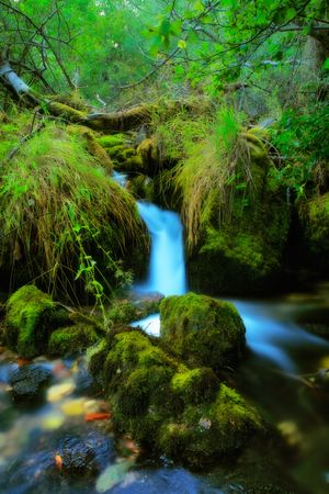 Brook in the village of Vevcani, Macedonia Stock Photo - 3715121