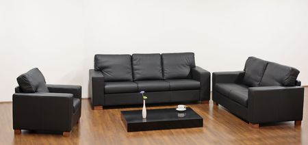 A modern minimalist living-room with black furniture Stock Photo - 4518860