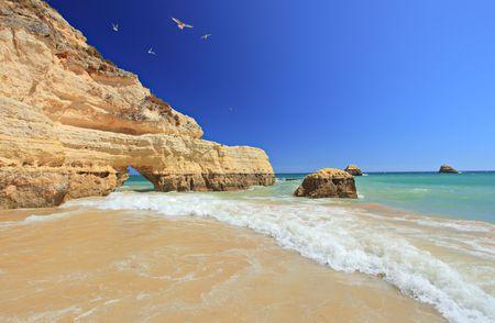 praia: Praia da Rocha beach in Portimao, Algarve, Portugal