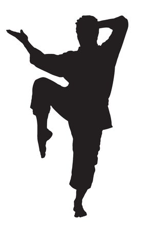 karate kick: A silhouette of a karate man isolated against white background