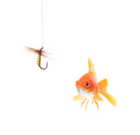 Golden fish and a fishing hook isolated on white photo