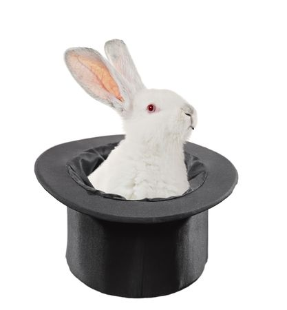tophat: A view of a rabbit in a top hat isolated on white background Stock Photo