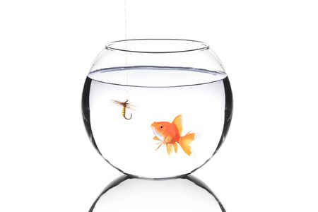Fish bowl with a fishing hook and a fish isolated on white  photo