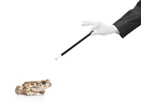 Magician holding a magic wand and a frog isolated on white background photo