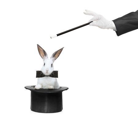 sombrero de mago: Un conejo en un sombrero y una varita m�gica sobre fondo blanco