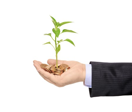 thrive: Hand holding a plant growing from pile of coins isolated against white background Stock Photo