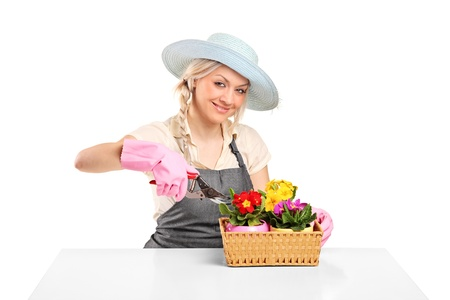 Woman cutting flowers with pruning shears on white background  Stock Photo - 9183774