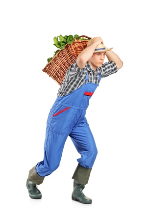 Farmer carrying a basket full of vegetables on his back isolated on white background photo