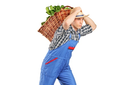 Farmer carrying a basket full of vegetables on his back isolated against white background photo