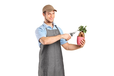 A male florist cutting a bonsai tree with pruning shears isolated against white background photo
