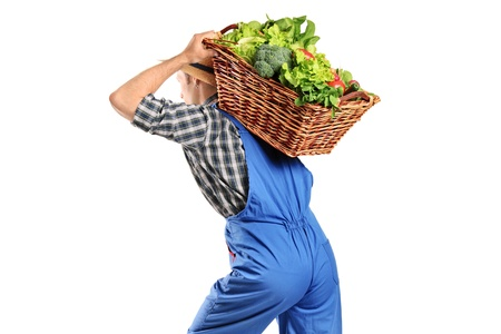 A farmer carrying a basket of vegetables on his back isolated on white background photo