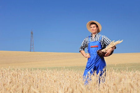 A farmer with panama hatholding a basket in a wheat field photo