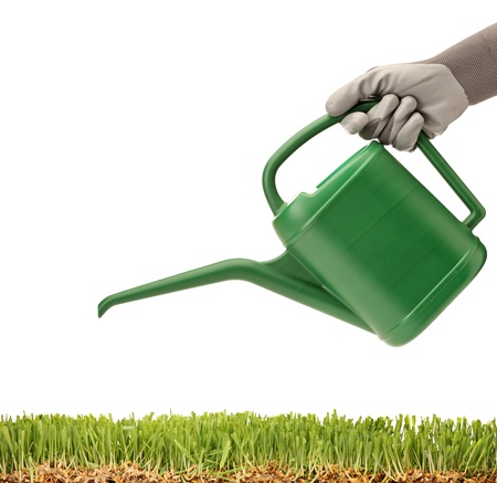 A person holding a watering can and green glass isolated on white background photo