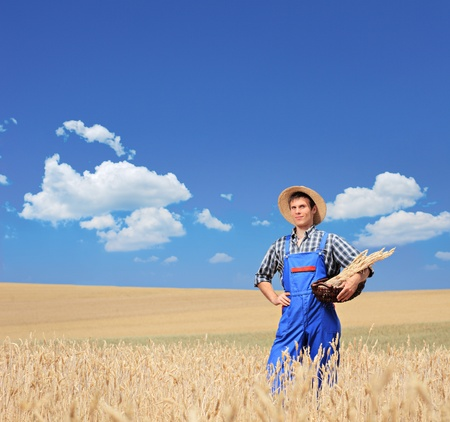 A young smiling farmer with posing in a wheat field photo