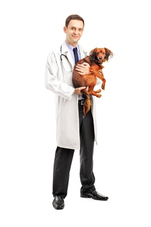 Full length portrait of a smiling veterinarian holding a puppy isolated on white background Stock Photo - 11140477