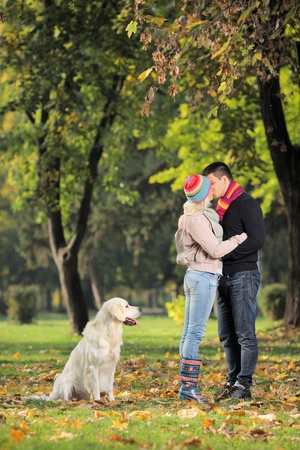 Boyfriend and girlfriend kissing in the park and a labrador retreiver dog watching them  photo