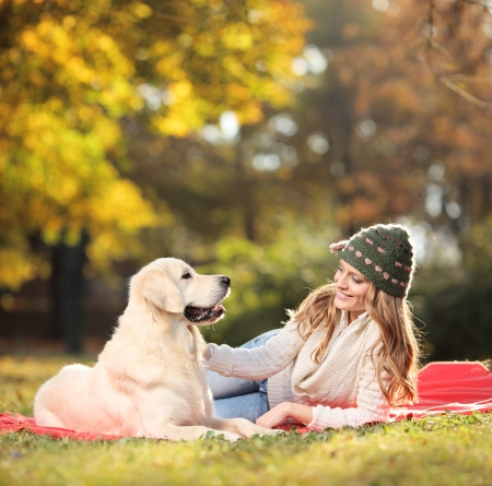 Girl playing with her labrador retriever dog in the park Stock Photo