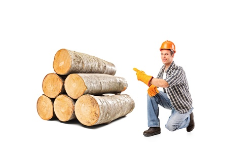 A smiling worker pointing on a pile of beech firewood isolated on white background  photo