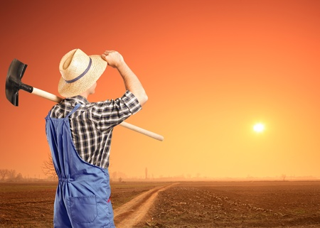shovel in dirt: A male farmer holding a shovel and looking at a sunset