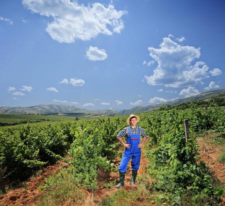 A young vintner posing at his vineyard, Macedonia photo