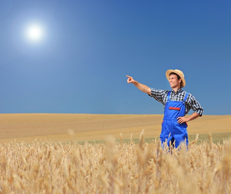 Young farmer pointing in a wheat field, Macedonia photo